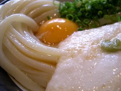 kamatamayama02.jpg